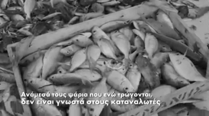 Έγκλημα στις ελληνικές θάλασσες