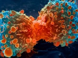 Σημαντική ανακάλυψη για τον καρκίνο. Βρήκαν εμβόλιο χωρίς παρενέργειες