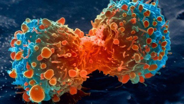 Σημαντική ανακάλυψη, εμβόλιο για τον καρκίνο χωρίς παρενέργειες