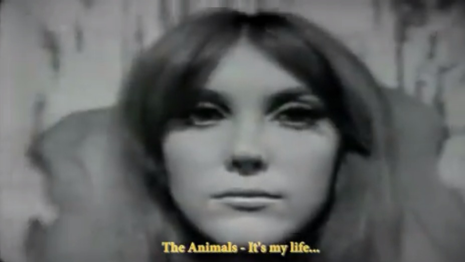 The Animals – It's My Life
